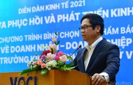 Tripod strategy crucial to economic recovery in 2021: experts